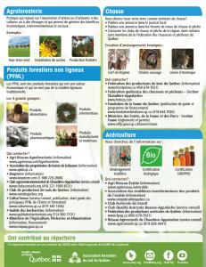 Informations pratiques pour propriétaires de boisé